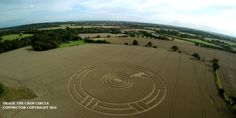 Crop Circle at Ark Lane, nr Stroud Green, Essex, United Kingdom. Reported 29th August 2014