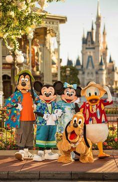Mickey, Minnie & Gang