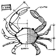 Tim Holtz Rubber Stamp 2015 CRAB SKETCH Stampers Anonymous U22638