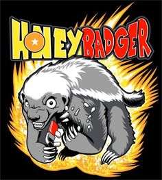 Honey Badger about to go super saiyan on you! @Sara Eriksson Sage new mascot for FF next year?