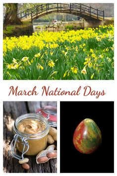 The flower for March is the daffodil and the gemstone is bloodstone. National Peanut Butter Day is just one of the days to celebrate this month. Check them all out at Always the Holidays. National Days In March, A Days March, March Month, Days Of The Year, Daffodils, Favorite Holiday, Peanut Butter, Have Fun, Gemstone