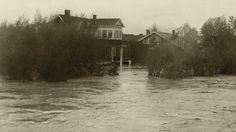 Fortieth Avenue, SW, Elbow Park Flooded,June 1923
