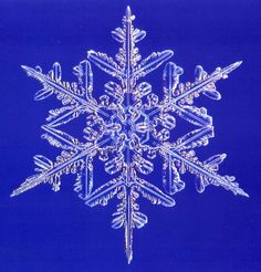 Snow Crystals .
