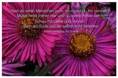 Mein Papa sagt...  Hast du einen Menschen gern, so musst du ihn versteh'n. Musst nicht immer hier und da, seine Fehler seh'n. Schau mit Liebe und Verzeih', denn am Ende bist du selbst nicht fehlerfrei.  Johann Wolfgang von Goethe    Weisheiten und Zitate TÄGLICH NEU auf www.MeinPapasagt.de