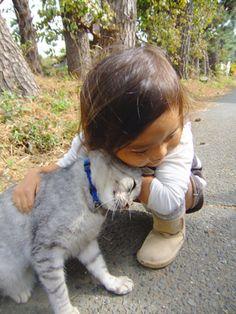 画像 : 猫と赤ちゃんが仲良しすぎて可愛い - NAVER まとめ