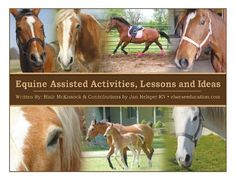 100+ Equine Assisted Activities, Lessons and Ideas by Blair McKissock MSEd and Jan Helsper RN,http://www.amazon.com/dp/1934922676/ref=cm_sw_r_pi_dp_5p8ftb0BHXYD78ZZ
