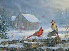 Snowy Cabin - Cardinals by Sam Timm