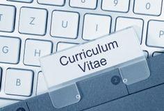 """Dossier """"Rédiger un bon CV"""" [catégorie d'articles], dans le blog 'Mode(s) d'emploi'"""