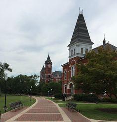27 Best Auburn University images