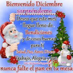FELIZ DÍA A LA VIDA: Bienvenido Diciembre (ver más...)