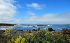 Washington State to California - one of the Worlds 20 Best Drives