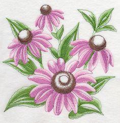 Purple Coneflower Sketch design (J9159) from www.Emblibrary.com