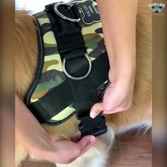 Comfortable for your fur-baby, works with breeds of ALL sizes. High quality, this harness will last FOREVER. No more slipping out of their harness! This is 'slip proof' and comfy for your fur-baby to wear on walks, hikes, and runs. Voted Best Harness of Cute Funny Animals, Cute Baby Animals, Funny Dogs, Animals And Pets, Funny Memes, Dog Items, Dog Care, Baby Care, Dog Harness