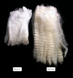 """""""Long wool sheep usually produce the heaviest fleeces because their fibers, though coarser, grow the longest. Hand spinners tend to prefer wool from the long wool breeds because it is easier to spin."""" Romney Sheep, Hand Spinner, New Zealand, Merino Wool, Crochet Hats, Unique, Clothing, Sheep, Breien"""