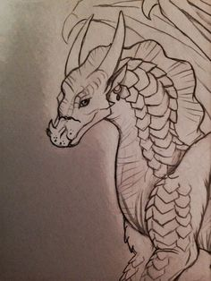 I love qilbi Wings Of Fire Dragons, Cool Dragons, Mythical Creatures Art, Fantasy Creatures, Animal Sketches, Art Sketches, Dragon Anatomy, Fire Drawing, Fire Fans