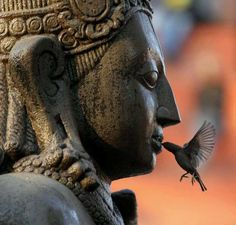 A sparrow feeds on an offering placed in the mouth of the idol of Lord Garud , Kathmandu Nepal