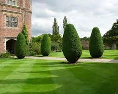 yew gardens에 대한 이미지 검색결과