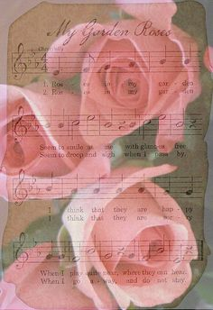My Garden Roses, music and lyrics (1) From: A Drop Of Pleasure, please visit