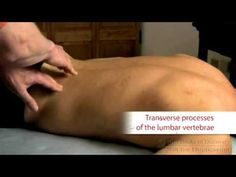 quadratus lumborum trigger point treatment