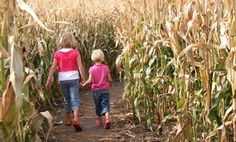 LEE FARMS - Groupon - Corn Maze for Two or Four at Lee Farms (Half Off) in Tualatin . Groupon deal price: $7