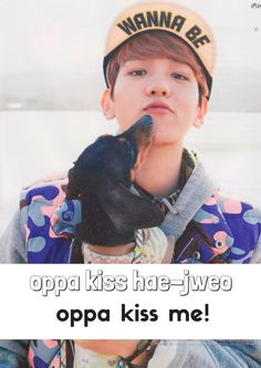 Learn Korean with Korean Idol Flashcards :)