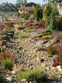 Dry riverbed look-alike garden design by Rod Whitlow. Dry riverbed look-alike garden design by Rod W Dry Riverbed Landscaping, Drought Resistant Landscaping, River Rock Landscaping, Drought Tolerant Landscape, Landscaping With Rocks, Landscaping Plants, Front Yard Landscaping, Landscaping Ideas, Hillside Landscaping