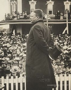 Theodore Roosevelt, Historian, Presidents, United States, American