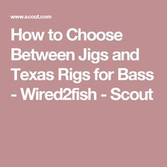 How to Choose Between Jigs and Texas Rigs for Bass - Wired2fish - Scout