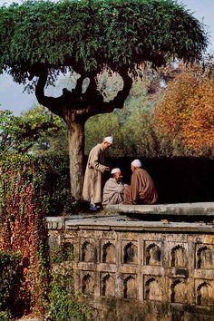 Three friends in Shalimar Gardens. Srinagar, Kashmir, India 1998 - Steve McCurry - Time Photo