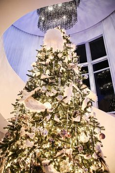 The Grand Christmas Tree In Foyer Vogue