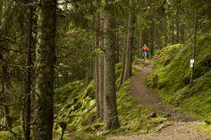 SCOTT WOMENS TRAIL - OUTDOORMIND http://outdoormind.de/news/scott-womens-trail