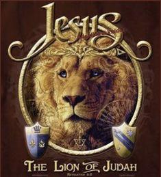 Jesus the Lion oh Judah Lion Of Judah Jesus, Judah And The Lion, Lion And Lamb, King Jesus, Jesus Is Lord, Arte Judaica, Pictures Of Jesus Christ, Tribe Of Judah, Jesus Christus