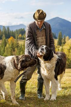 Ciobanesc de Bucovina / Bucovina Shepherd dog Visit Romania, Romania Travel, Rare Dog Breeds, Beautiful Landscape Wallpaper, Dog List, Puppy Mills, Fauna, Dogs Of The World, Shepherd Dog