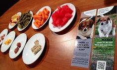 Our board-certified veterinary nutritionist explains what a 50 calorie snack looks like--plus an easy way to tell if your dog is overweight.