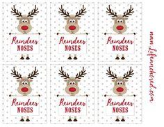 Dropbox - Reindeer Noses Printable Tags.jpg                                                                                                                                                                                 More