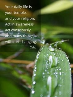 """Your daily life is your temple and your religion. Act in awareness, act consciously, and many things will start changing."" ~ Osho"