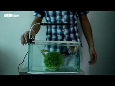 Aquarium clip led lights GAKO AQUARIUM FACTORY