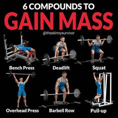Gain Muscle Mass Using Only Dumbbells With 10 Demonstrated Exercises Compound exercises are not designed to isolate a muscle, but simply to work as much muscle as possible—from multiple body parts—as efficiently as possible! In general, compound exercises Gym Tips, Gym Workout Tips, Fun Workouts, Skinny Guy Workout, Girl Workout, Workout Men, Cardio Gym, Workout Routines, Crossfit
