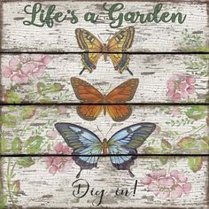 Jean Plout 'Country Garden Butterfly' Canvas Art - 24 x 24 Artist Canvas, Canvas Art, Butterfly Canvas, Garden Signs, Yard Art, Baby Clothes Shops, Amazing Gardens, Fine Art Prints, Poster