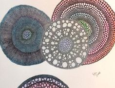 Julie Dodd paintings inspired by microscopic images of tree cross sections.