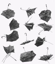 Taxonomies draw, pencil, umbrellas, paper, art, christin young, inspir, rain, illustr