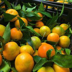 Le clementine di Vincenzo. La qualità ritrovata.