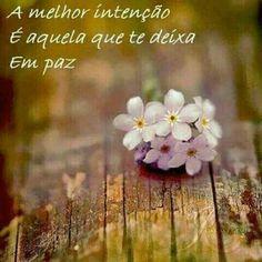 A melhor intenção é aquela que te deixa em paz.
