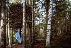 TREEHOTEL SWEDEN  Photographed by Patrick Demarchelier, Vogue, December 2014