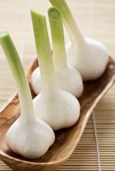 Frischer Knoblauch - sieht klasse aus! und ist lecker und gesund. Knoblauch selbst züchten wird hier erklärt: http://www.tomatetomate.eu/knoblauch-selbst-anbauen/