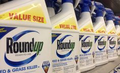 Monsanto's Roundup Linked To Fatty Liver Disease | Care2 Causes