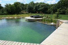 Natural Pools Gallery @ Woodhouse Natural Swimming Pools