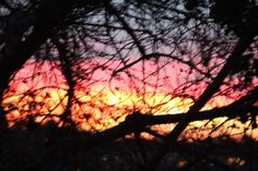 one nice sunrise from our dining room window.