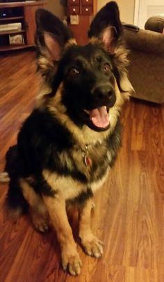 My Bella baby!!