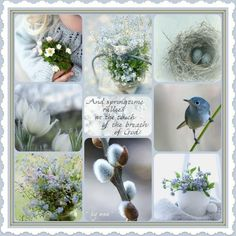 Word Collage, Perfect Peace, Beautiful Collage, Color Quotes, Spring Awakening, Spring Blooms, Hello Spring, Spring Time, Color Inspiration